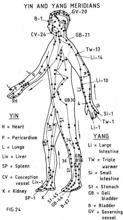 Meridian_Yin_Yoga